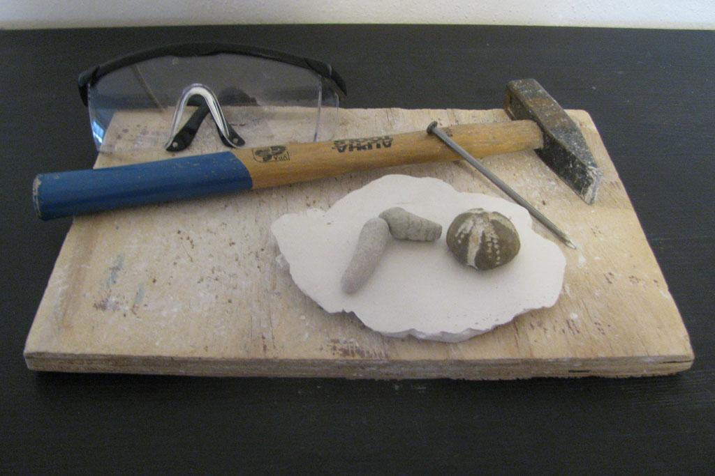 Utensilien zum Fossilien präparieren