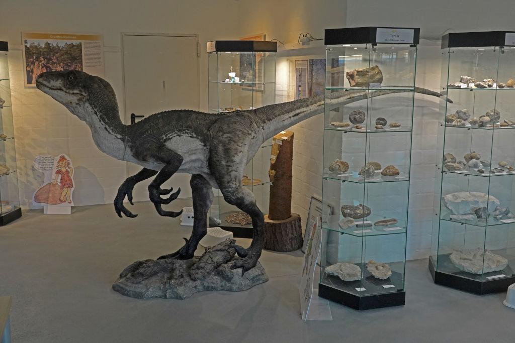 Dinosaurier im Eiszeitmuseum